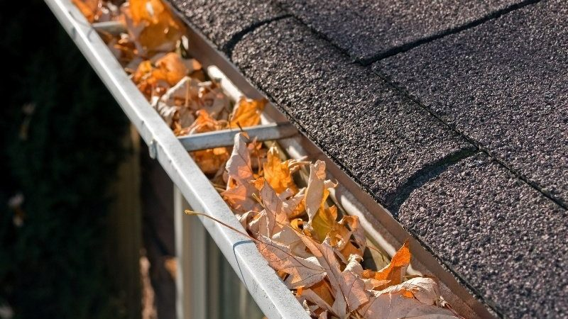 Hire a professional gutter cleaning services